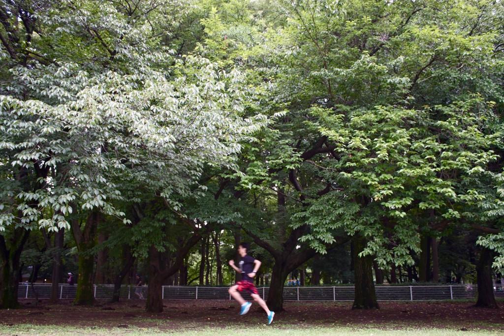 「プロ転向後、初フルマラソンを終えた八木勇樹の想い」の画像