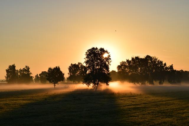 「お正月休みだからこそウォーキング。朝やるメリ・デメリ&夜やるメリ・デメリ」の画像