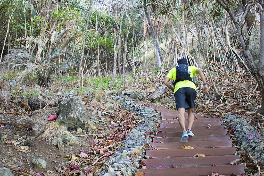 「小笠原諸島でもトレイルランニングが可能だった!? 楽しすぎた小笠原の「絶景巡りラン」」の画像