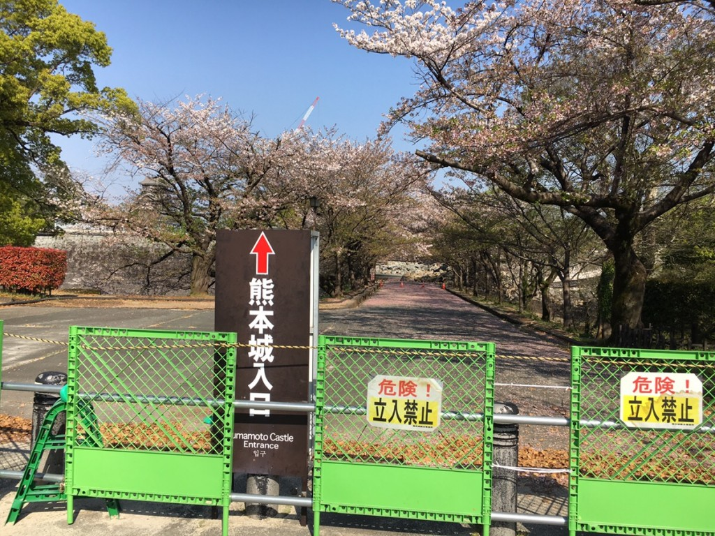「「そこに道がない……」、東京にいてはわからなかった熊本の姿」の画像