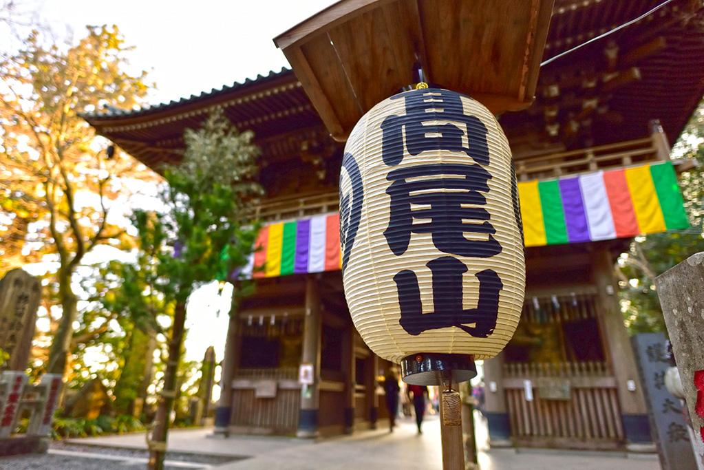 「週末は日帰りでトレイルへ。東京都内から日帰りでアクセスできる爽快トレランコース特集」の画像
