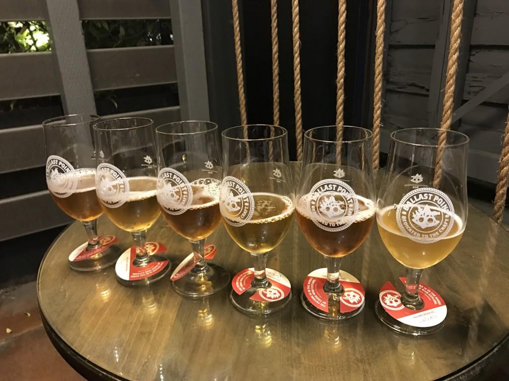 「サボテン・アシカ・地ビール!サンディエイゴを走ってみた」の画像